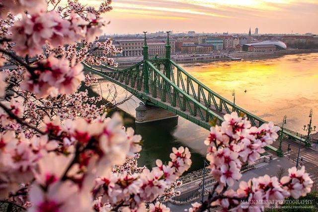 River Dinner Cruise Spring Budapest